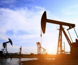 Курс нефти на паузе после длительного ралли